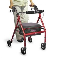 Adventure 6 Walker. Click for more information...